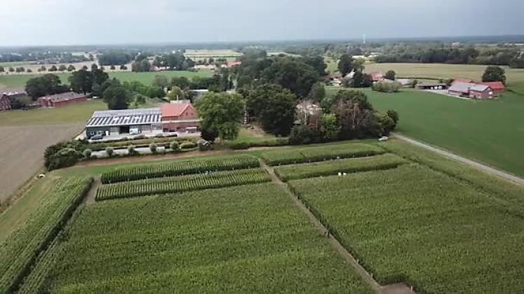 Standortreport Borken - Standortüberblick