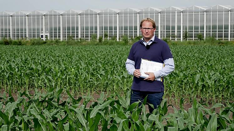 Standortreport Spezial - Behandlungsmöglichkeiten für Verunkrautung im Mais