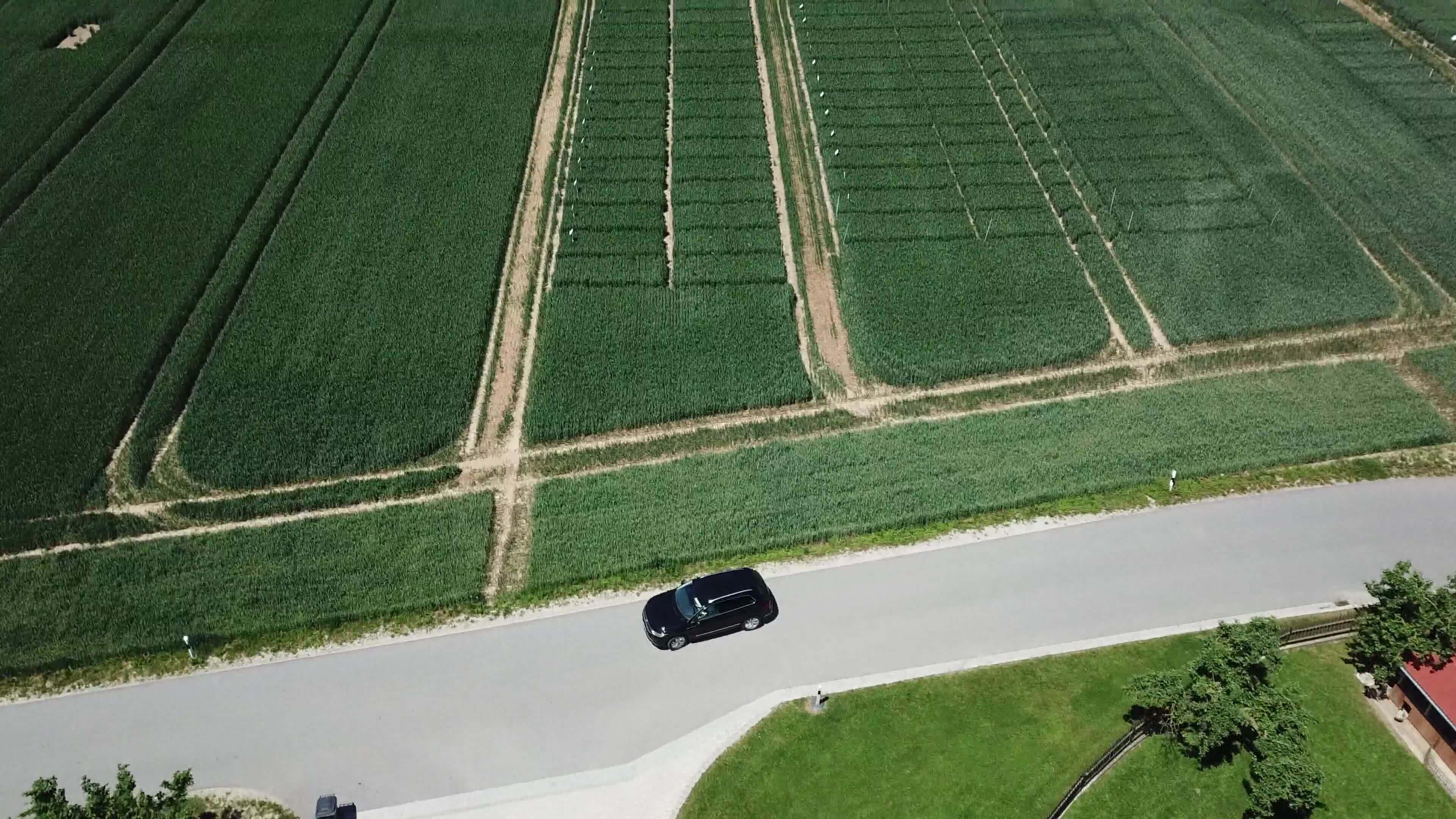 Standortreport Aich - Fungizideinsatz in Winterweizen